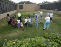 Urban garden, part of HEALTHY Muskegon initiative